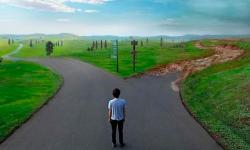Perdas e ganhos no caminho para dentro de si: Propósito de vida e trabalho