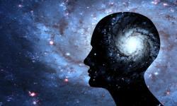 Juízos de valores transcendentais: Auto análise, devir e resiliência  segundo a filosofia de Epiteto!