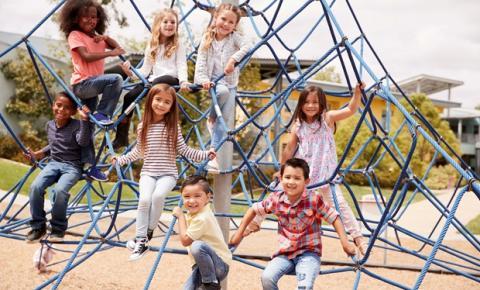 Lancheiras devem ser equilibradas e adequadas às necessidades infantojuvenis